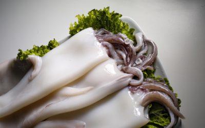Como conservar y preparar los Cefalópodos en la cocina